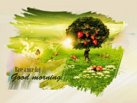 صور صباحية جميلة (2)