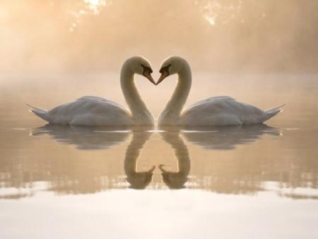 صور عاطفية جميلة رومانسية (2)