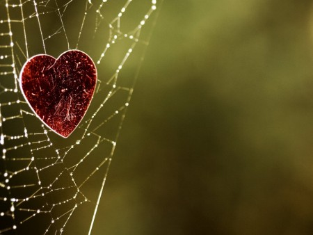 صور قلوب حب روعة (4)