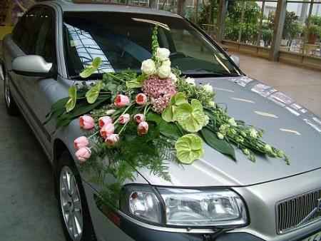 سيارات اعراس  (1)
