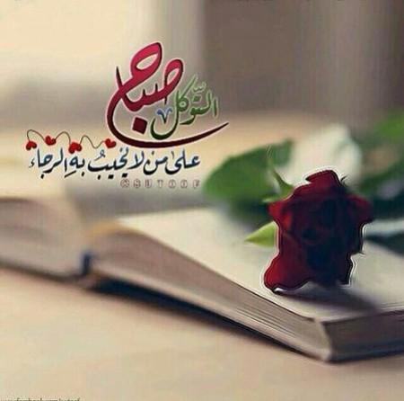 صباح الخير صور  (1)