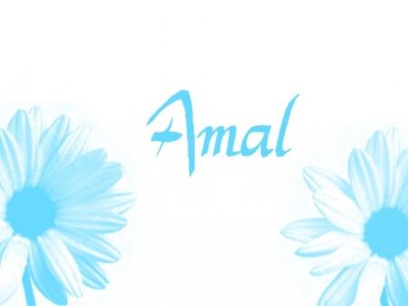 صور اسم امال (3)