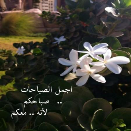 صور للصباح فيس بوك وتوتر (3)