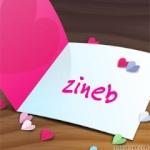 احلي صور بأسم زينب (1)