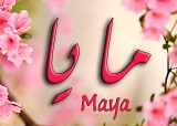 خلفيات اسم مايا (1)
