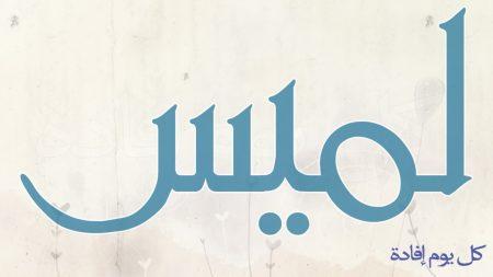 رمزيات اسم لميس (2)