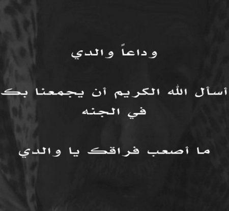 صورة عن فضل الاب (2)
