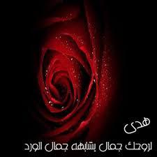 رمزيات اسم هدي (2)