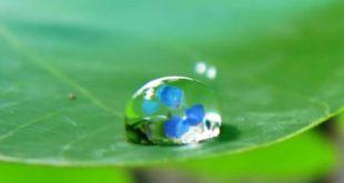 صورة قطرة ماء (2)