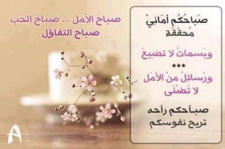 اجمل صور صباح الخير  (1)