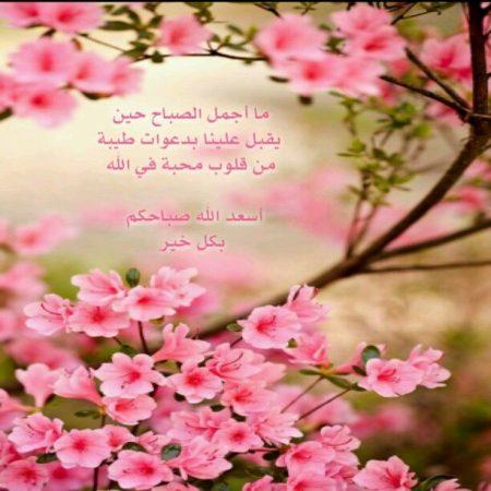 صور جميله صباح الخير  (2)