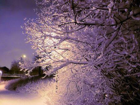 صور رمزية للثلوج والشتاء 2017 (2)
