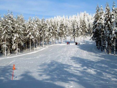 صور عن الشتاء (1)