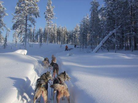 صور عن فصل الشتاء رمزيات وخلفيات عن البرد و الشتاء (2)