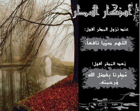 اجمل صور للمطر (3)