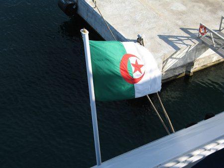 الجزائر علم بجودة عالية (2)