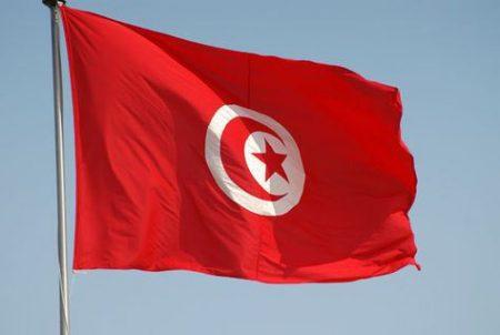 العلم التونسي (3)