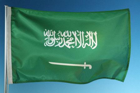 العلم السعودي بالصور (4)