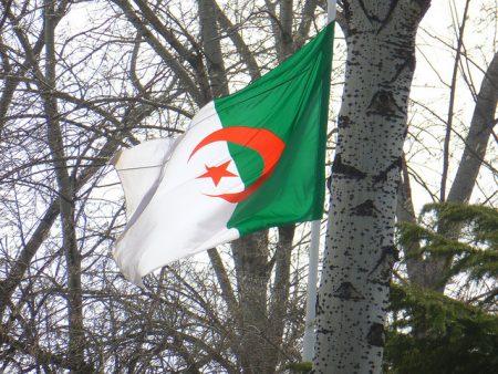 تحميل صور علم الجزائر (1)