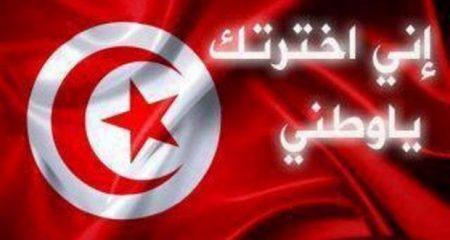 تونس بالصور (3)