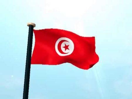 خلفيات علم تونس (1)