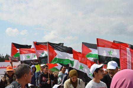 صور العلم السوري (3)