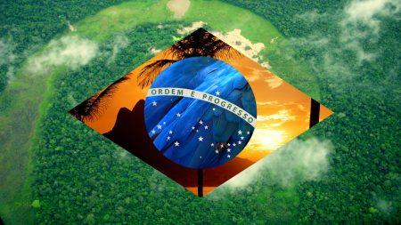 صور تصميمات والوان علم البرازيل (3)