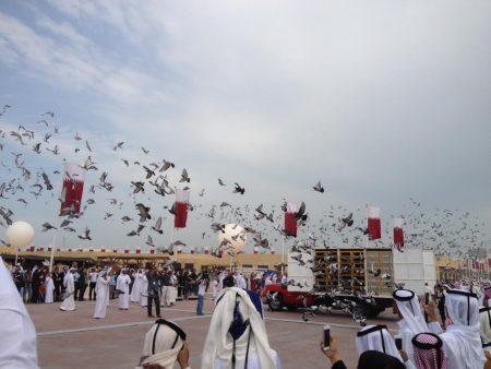 صور رمزية عن قطر (1)