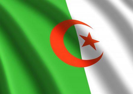 صور علم الجزائر (4)