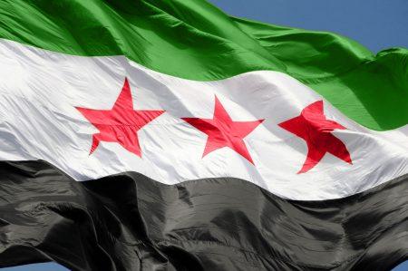صور علم سوريا (2)