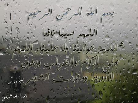 صور عن المطر (1)