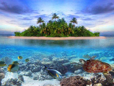 صور مناظر طبيعية خلابة ورائعة (1)