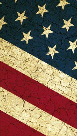 علم امريكا بالصور (3)