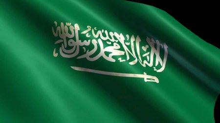علم دولة السعودية (3)