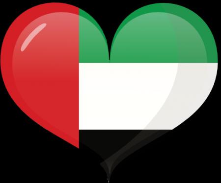 علم دولة الكويت (2)