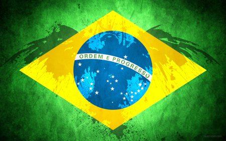 Brazil Flag (3)