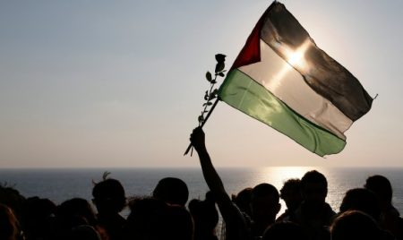الوان علم فلسطين (2)