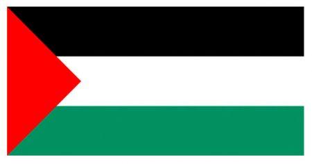 الوان علم فلسطين (3)