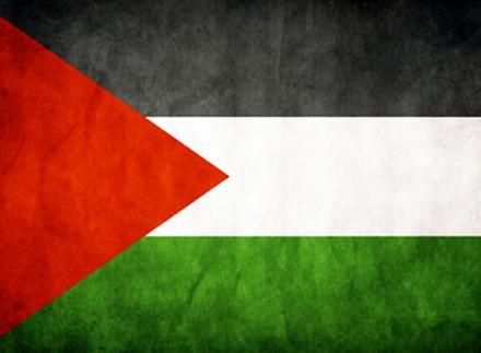 الوان علم فلسطين (4)