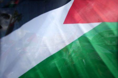 خلفيات علم فلسطين (1)