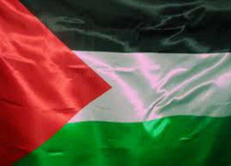 خلفيات علم فلسطين (2)