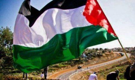خلفيات علم فلسطين (4)