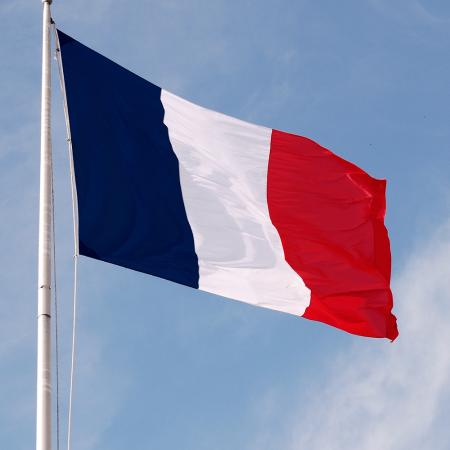 دولة فرنسا علم رمزيات وخلفيات (1)