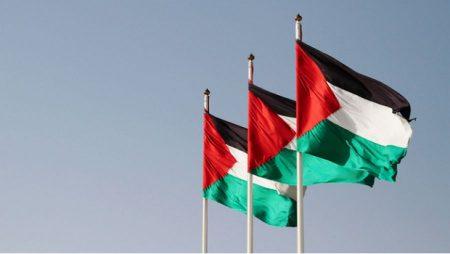 رفرفة علم فلسطين (2)