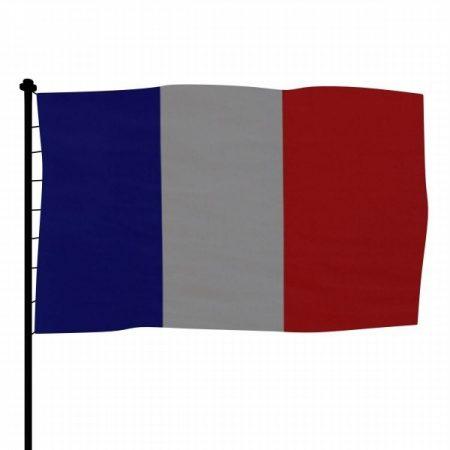 رمزيات علم فرنسا (1)