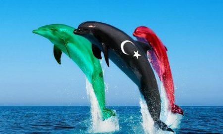 رمزيات علم ليبيا (1)