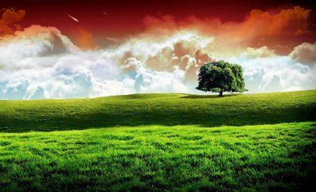 صور علم الهند (2)