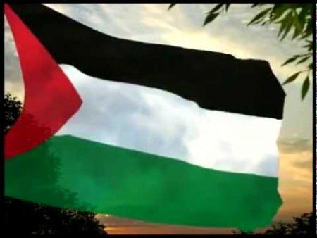 صور علم فلسطين رمزيات وخلفيات العلم الفلسطيني (4)