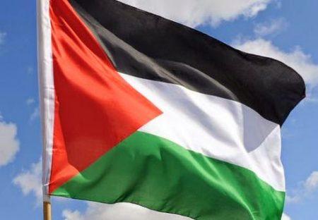 صور عن العلم الفلسطيني (4)