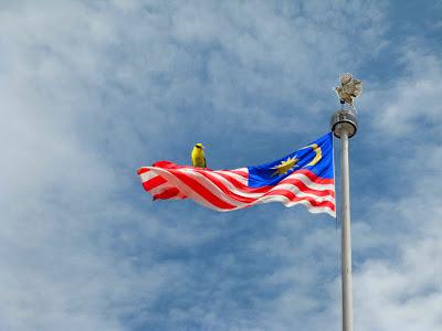 صور عن دولة ماليزيا وعلمها (1)